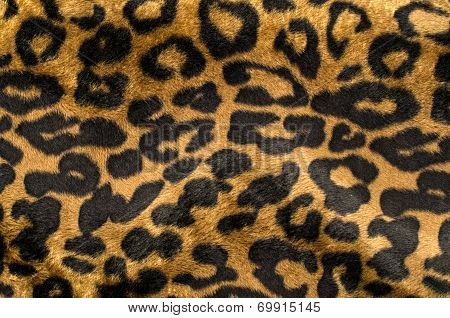 Brown and black leopard pattern.