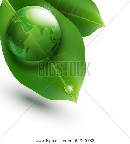 environmental element with transparent green ball-globe and leaves on a white background