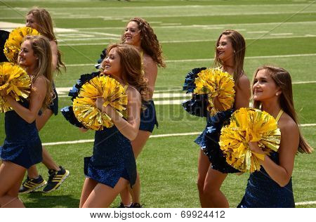Michigan Dance Team