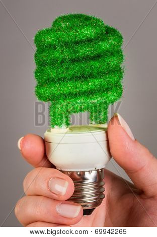 Eco light bulb in hand on gray background
