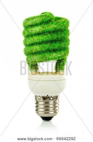 Eco light bulb isolated on white background