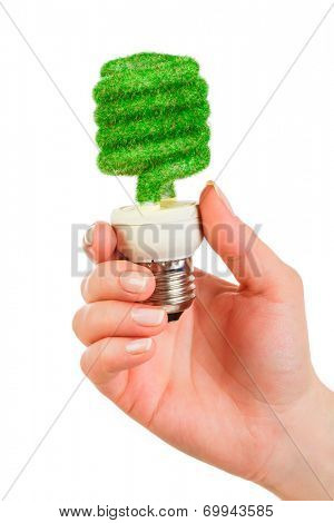 Eco light bulb in hand isolated on white background