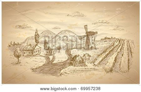 Rural landscape hand drawn illustration with windmill and vineyard. Eps10