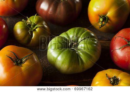 Colorful Organic Heirloom Tomatoes