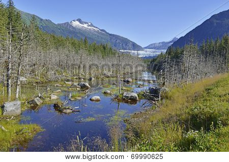Wilderness Landscape in Alaska