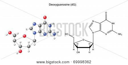 Structural Chemical Formula And Model Of Deoxyguanosine