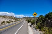 pic of lamas  - Traffic Sign  - JPG