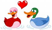 In Love Ducks