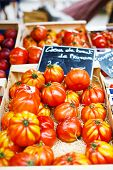image of plum tomato  - Organic tomatoes from mediterranean farmers market in Provence France - JPG