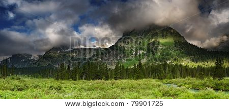 Beautiful valley in Altai mountains