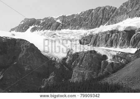 Crowfoot Glacier In Icefield Parkway. Alberta. Canada