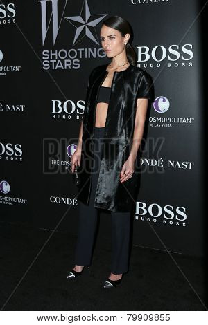 LOS ANGELES - JAN 9:  Jordana Brewster at the W Magazine`s Shooting Stars Exhibit at the Old May Company Building on January 9, 2015 in Los Angeles, CA