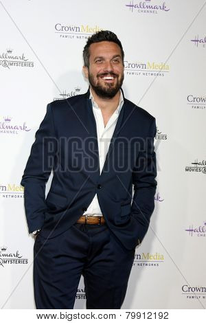 LOS ANGELES - JAN 8:  Fabio Vivani at the Hallmark TCA Party at a Tournament House on January 8, 2014 in Pasadena, CA