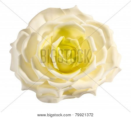 Perfect Delicate Fresh White And Yellow Rose