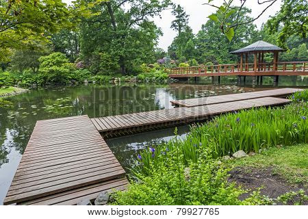 Wooden Pier And Beautiful Plants In A Japanese Garden