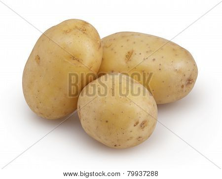 Potatoes Isolated On White Background With Clipping Path