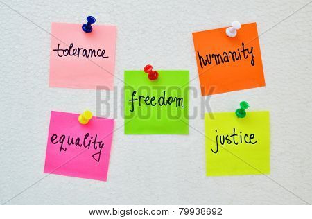 Human Rights D