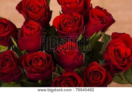 Twelve Red  Valentine  Roses