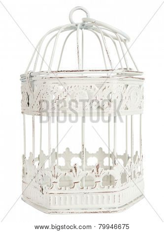 Decorative bird cage isolated on white