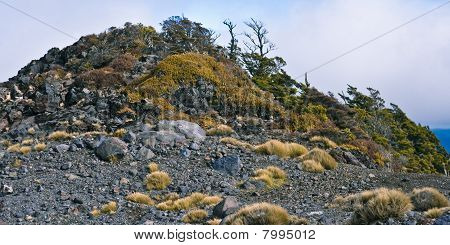 Hill Covered With Rocks And Underwood