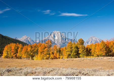 Autumn In Grand Tetons