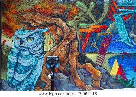 Street art Montreal owl