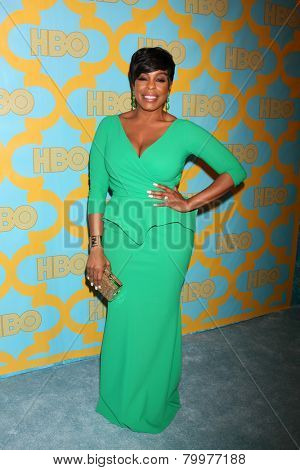 LOS ANGELES - JAN 11:  Niecy Nash at the HBO Post Golden Globe Party at a Circa 55, Beverly Hilton Hotel on January 11, 2015 in Beverly Hills, CA