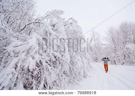 Lumberjack walks in a snowy forest
