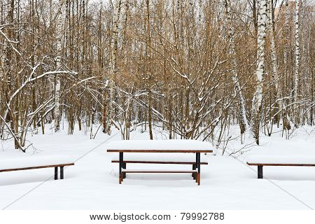 Snow Covered Table And Benches On Recreation Area