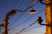 image of hitler  - Fence with wire and lamp around  concentration camp - JPG