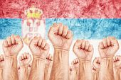 pic of labourer  - Serbia Labour movement workers union strike concept with male fists raised in the air fighting for their rights Serbian national flag in out of focus background - JPG