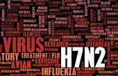 pic of avian flu  - H7N2 Concept as a Medical Research Topic - JPG