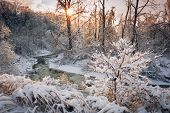 foto of snow forest  - Winter landscape of snow covered forest with flowing river after winter snowstorm glowing and sparkling in warm sunshine - JPG