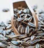 stock photo of sunflower-seed  - sunflower seeds in a wooden spoon - JPG