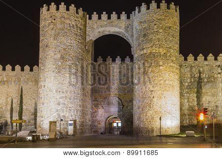 Door Of Alcazar Wall