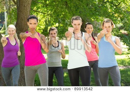 Fitness group working out in park on a sunny day