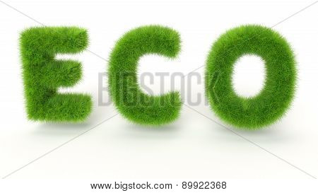 Eco - Green Grass Text On White Background - High Quality 3D Render