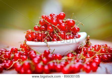 Organic red currant close-up