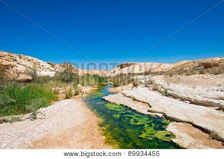 Water In The Desert Of Negev, Israel