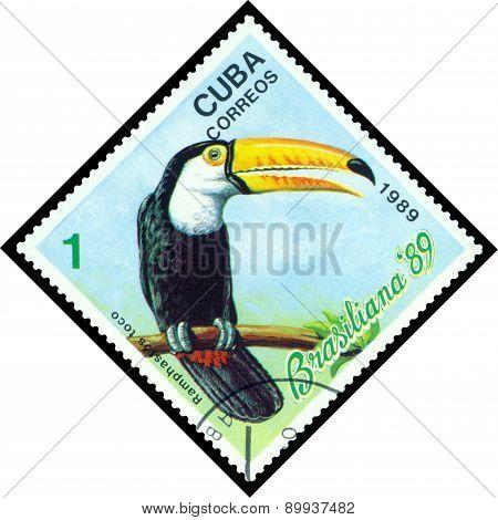Vintage  Postage Stamp.  Bird Ramphastos Toco.