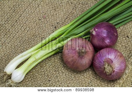 Onion and spring onion on sack background