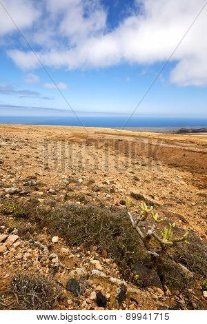 Spain Volcanic Tim  Rock Stone   Volcanes Lanzarote