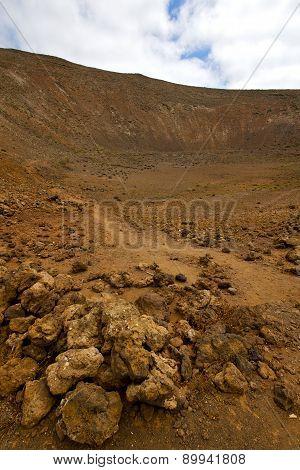 Wood Plant  Bush Timanfaya  Volcanic Rock Stone      Lanzarote