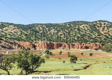 Moroccan landscape - Taroudant region