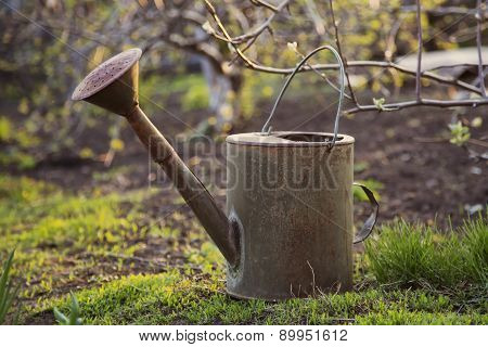 Old watering can in garden