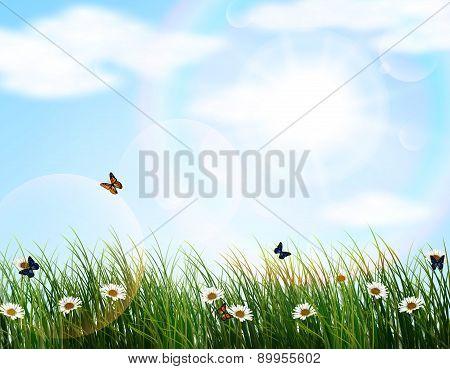 flower of garden
