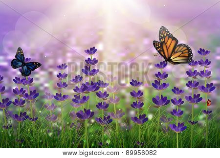 Purple tulips and butterfly
