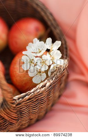 Red apples in basket on pink background background