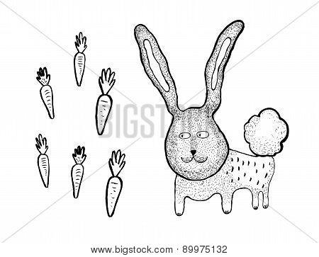 Hand Drawn Rabbit And Carrots, Vector Illustration