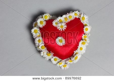 Heart With Marguerites On Grey Background